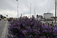 北欧风景图片(11张)