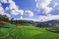 湖南紫鹊界梯田风景图片(10张)