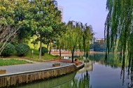上海新金桥公园风景图片(9张)