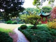上海华东师大风景图片(9张)