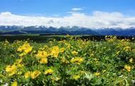 新疆喀拉峻草原风景图片(9张)