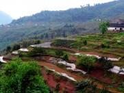 贵州赤水五柱峰风景图片(19张)