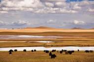 西藏双湖县风景图片(24张)