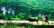 广东连南风景图片(9张)
