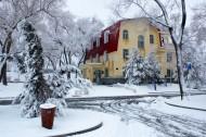 哈尔滨冬天风景图片(28张)