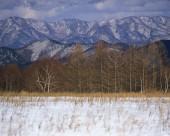 日本冬景图片(25张)