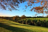 新西兰奥克兰秋色风景图片 (10张)