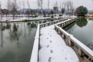 浙江海宁盐官古城雪景图片(12张)