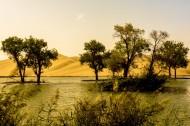 新疆罗布人村寨风景图片(11张)