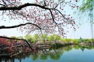 江苏无锡蠡园风景图片(13张)