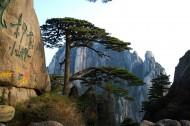 安徽黄山风景图片(167张)