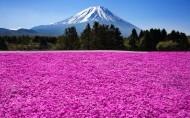 日本富士山风景图片(9张)