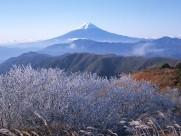 日本富士山自然风光图片(20张)