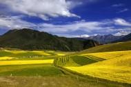 青海祁连县卓尔山风景图片(15张)