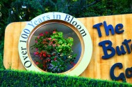 加拿大布查特花园风景图片(7张)