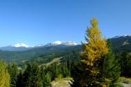 加拿大惠斯勒山风景图片(8张)