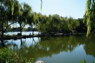 北京紫竹院风景图片(20张)