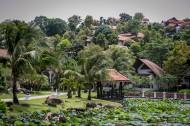 泰国优美风景图片(12张)