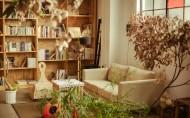 柔软的沙发图片(15张)