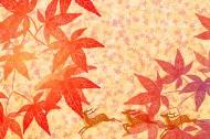 卡通动植物背景图片(30张)