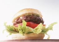汉堡包图片(10张)