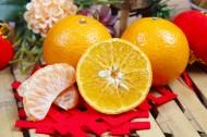酸甜可口的脐橙图片(11张)