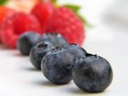 圆溜溜的蓝莓图片(10张)