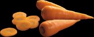 胡萝卜透明背景PNG图片(15张)