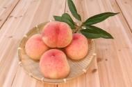 美味的桃子图片(11张)