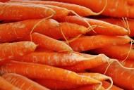 美味的胡萝卜图片(15张)