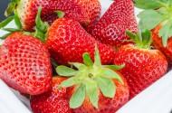 鲜红又美味的草莓图片(14张)