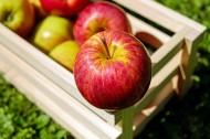 又大又圆的红苹果图片(10张)