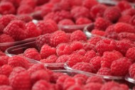新鲜的树莓图片(10张)