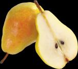 梨子透明背景PNG图片(17张)