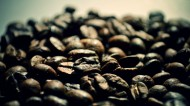 咖啡豆图片(9张)