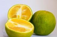 清新可口的柠檬图片(15张)