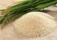大米米饭图片(11张)