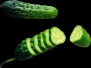 黄瓜透明背景PNG图片(15张)