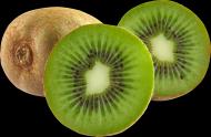 猕猴桃透明背景PNG图片(15张)