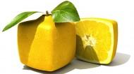 诱人的柠檬图片(6张)