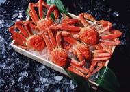 海鲜食材螃蟹的图片(15张)