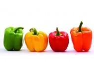彩色柿子椒图片(16张)