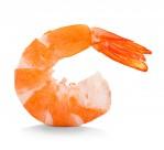 新鲜的虾肉图片(12张)