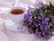 茶艺图片(20张)