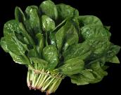 各类蔬菜透明背景PNG图片(15张)