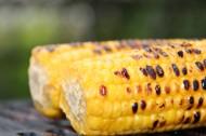 童年记忆烤玉米图片(10张)
