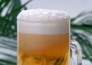 啤酒图片(12张)