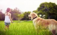 人与动物友好相处图片(23张)