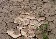 干旱土地图片(3张)
