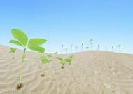 地球沙漠化素材图片(9张)